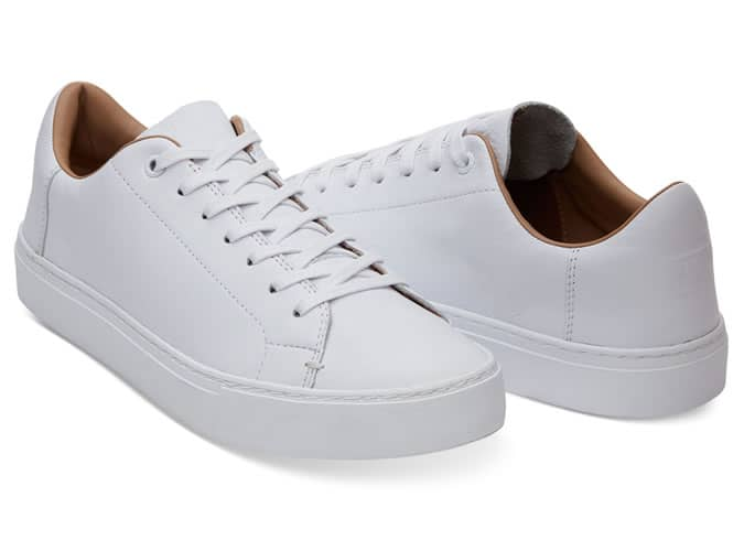 Toms Lenox Low Top Sneakers